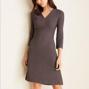NWOT Ann Taylor Doubleweave V-Neck Flare Dress